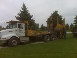 tree_moving-30